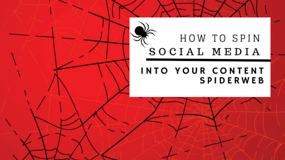how to spin social media into your content spiderweb